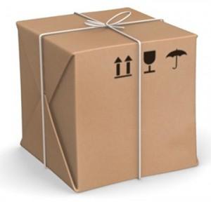 Gostovanje - karakteristike paketa